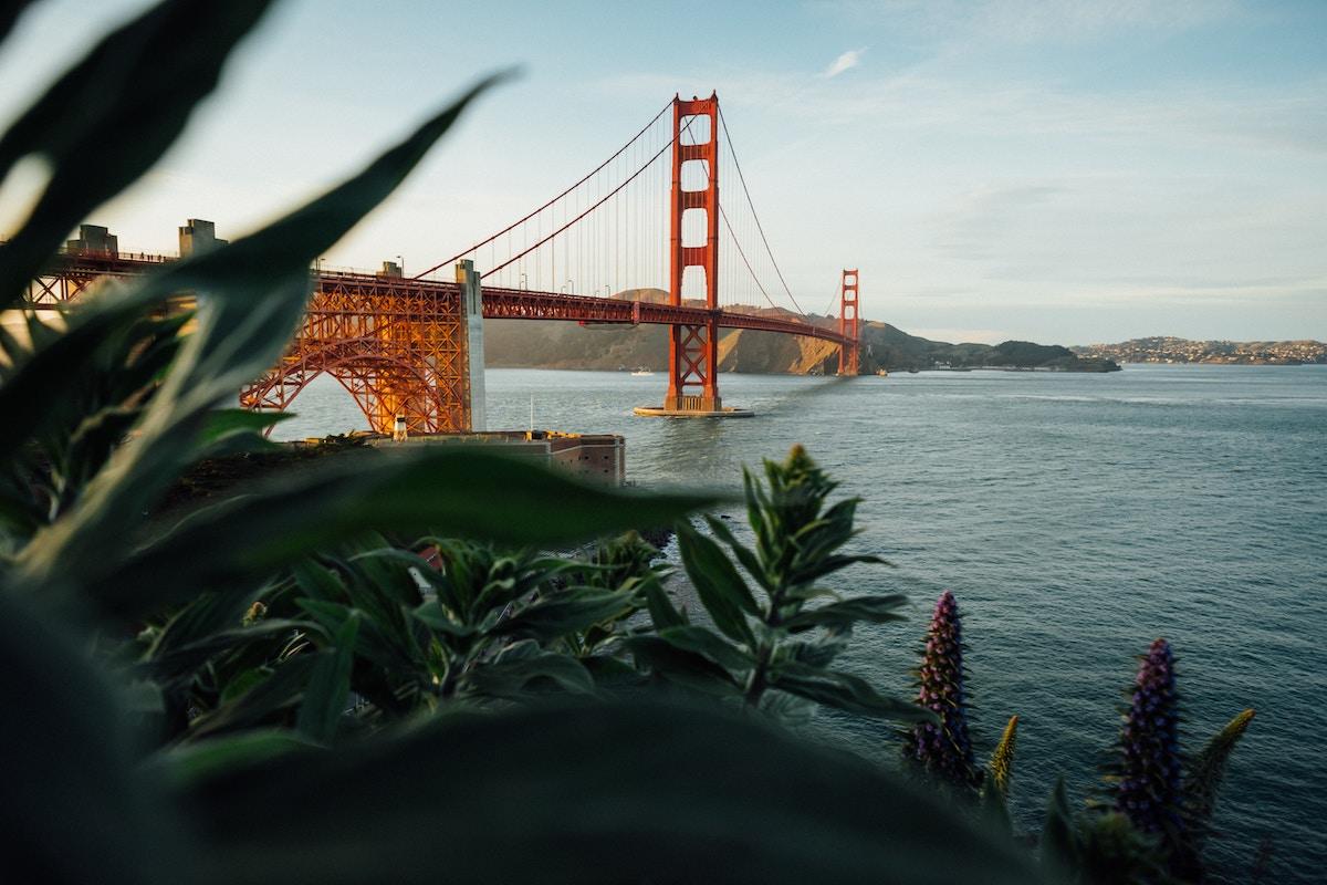 The Meeting Profiles: SPRT x San Fransisco!